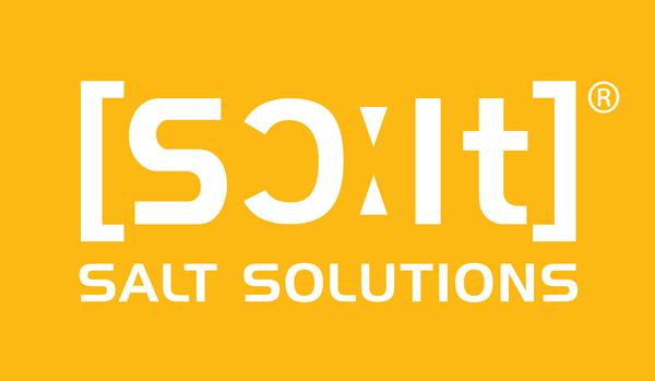 Logo der Firma SALT Solutions AG, IT-Unternehmen, Digitaler Dienstleister in der Stadt Würzburg