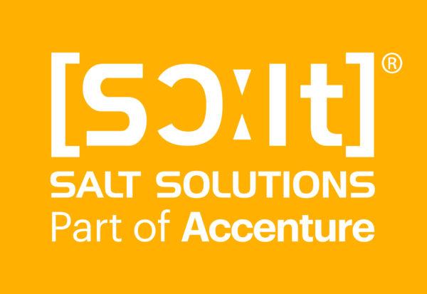 Logo der Firma Salt Solutions, Würzburg